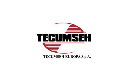 TECUMSEH Motorgrundplatte 1603.0021